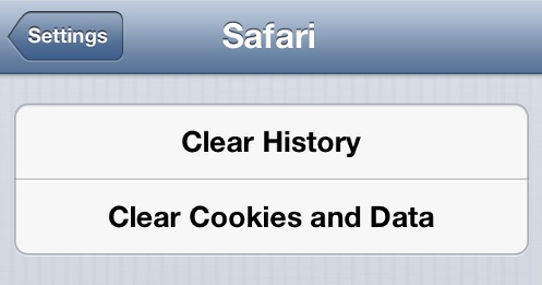 Clear iPhone Browsing History