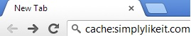 Cache Webpage in Google